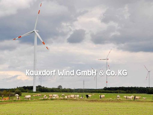 Geschützt: Kauxdorf