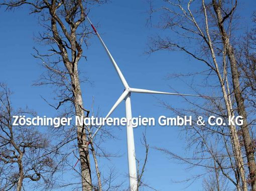 Geschützt: Zöschinger Naturenergien